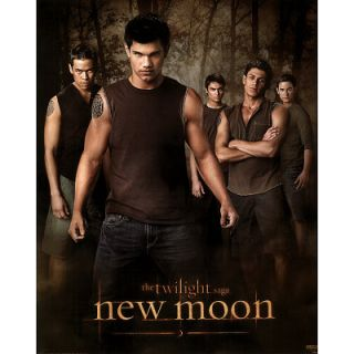 Twilight New Moon Jacob Wolf Pack Poster Taylor Lautner