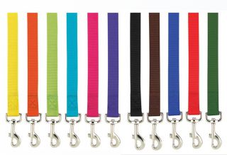 Nylon Dog Leash Lead 4 or 6 Foot Bright Basic Solid Colors 11 Colors 2