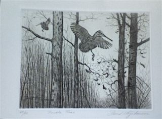 David Hagerbaumer Large Original Signed Art Etching Woodcock