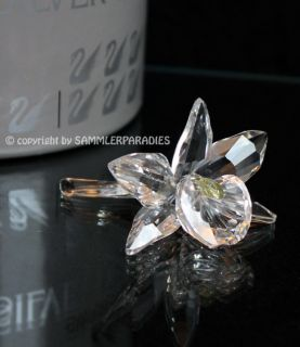SWAROVSKI CRYSTAL BLUME ORCHIDEE Figurine Silver Crystal Kreation